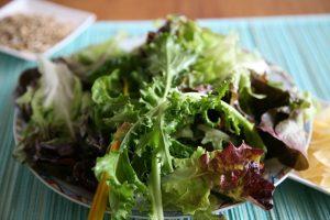 Kopfsalat, Rucola, Eichblattsalat