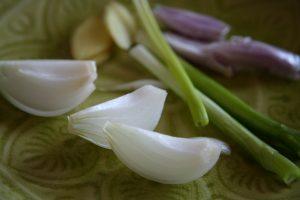 Schalotten, Frühlingszwiebeln, Zwiebeln und Knoblauch auf einem grünen Teller