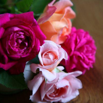 Blumen gegen Urlaubs Blues