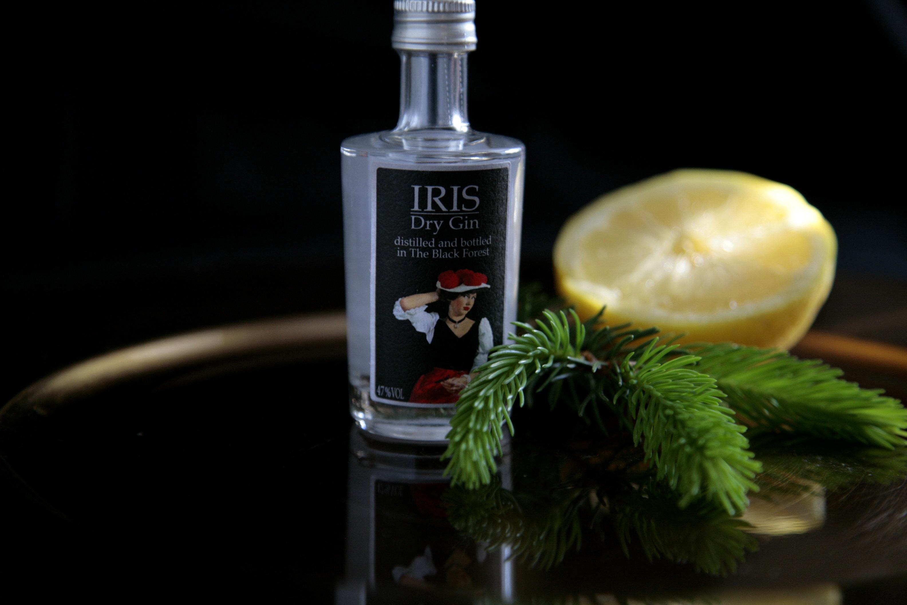 Gin - auf Reisen entdecken